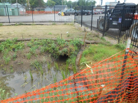 Where does the raingarden pipe originate? (Kipp Question # 3896? We've lost count…)