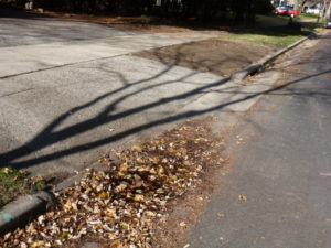 The city has prioritized replacing a paved segment of terrace with grass, over repairing a pothole where children slip on ice.